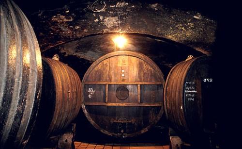 Wine cellar in Maribor Slovenia