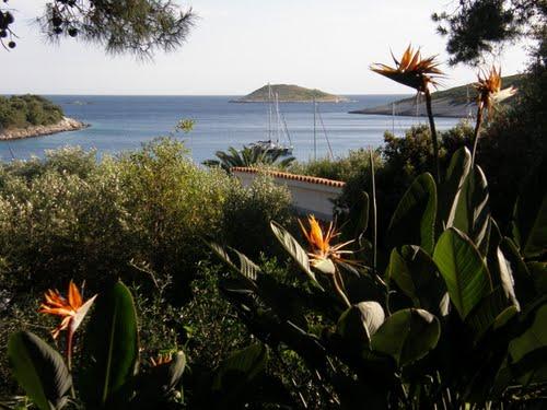 St. Clement Island Pakleni Croatia